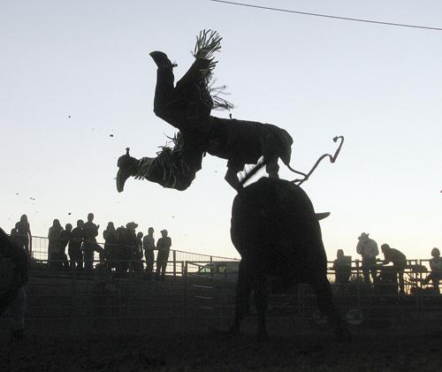 sf bullrider dismount
