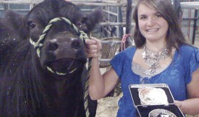 Madi Shults remains undefeated in beef showmanship in 2012 and was honored as the highest ranked 4-H junior livestock judge in Colorado.