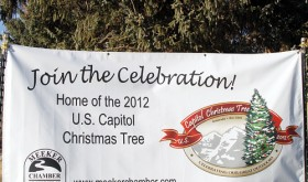A banner placed on the courthouse lawn invites everyone to join the celebration of Colorados gift to the nation starting Nov. 2.