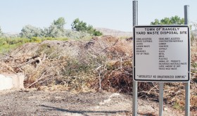 Residents can legally dump tree limbs, garden waste, leaves and other vegetation at the tree dump on Purdy Road, just east of the Rangely Camper Park. The Town of Rangely, which provides the free service, asks that residents call 675-8476 during the week to meet an employee there before dumping the vegetation.