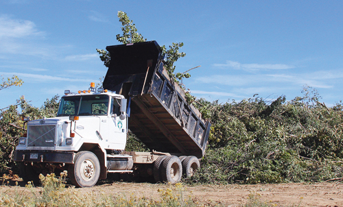 A dump truck deposits another load of broken limbs and branches during the clean-up process.