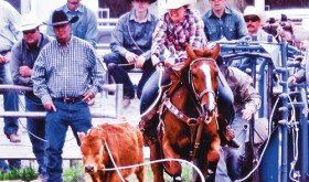 Deena Norell appears in magazine, qualifies for National HS Rodeo Finals