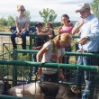 "On July 12, Rhett Long of Vernal, Utah, visited the Rangely 4-H Community Pens to teach the 4-H members how to shave a pig, what to expect in showmanship at the Rio Blanco County Fair and offer advice for feeding 4-H swine. There were more than 30 4-H members and parents, some from as far as Grand Junction, present to listen to Long. Bonnie Long, who organized the event, said, ""Rhett did a great job and we had a great turnout from Rangely and Grand Junction 4-H members and parents. Thank you to Encana for adding monetary support for activities such as this."" In 2015, a new 4-H club called Elite 8 will be exploring livestock, leadership and will be putting together another clinic to inform 4-H members, she said. Every 4-H member at the event received a prize. The Rio Blanco County Fair officially begins Friday and runs through Aug. 2."
