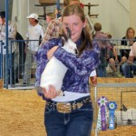Caitlyn Ducey – Rangely Market Champion Rabbit Sold for $1,250 – Alliance Energy/Hays Petroleum