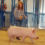 Taylor Morris – Meeker Reserve Champion Swine Sold for $3,250 – Gerald and Twila Morris