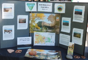 """The Bureau of Land Management, which has the White River Field Office in Meeker, had a wilderness display on hand for the """"50 Years Wild"""" celebration on the county courthouse lawn Saturday in Meeker. The display addressed area wilderness study areas, including Skull Creek, Black Mountain, Oil Spring Mountain, Bull Canyon, Willow Creek and  Windy Gulch."""