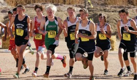 Cross country runners at state championships…