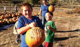 Rangely Community Gardens ends season by giving away 550 whole pumpkins