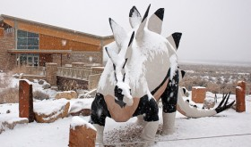 Looking a bit cold and lonely, this stegosaurus stands sentinel at the visitor center at Dinosaur National Monument. There hasn't been a lot of snow at the lower elevations of Rio Blanco County, but measurable snow has been reported in the high country.