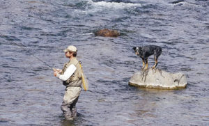 Mark Scritchfield and his faithful fishing companion tried their luck along the river.