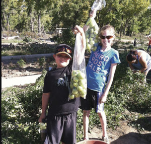 Children's Gardens participants Braden Lucas and Susie Gillard harvested green tomatoes last fall. The Gardens is gearing up for a variety of children's activities this spring and summer, with all community children welcome to attend.