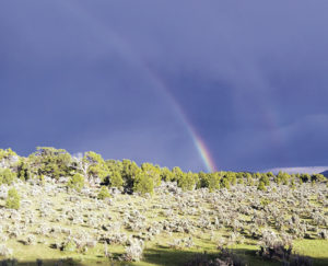 Colorado has long been known for quick-changing weather conditions, and this double rainbow was caught on Sunday afternoon amid the different weather conditions of sun, clouds, rain, wind and thunder in the area.