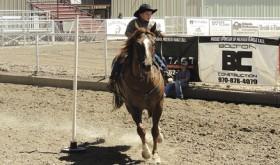 Horsemanship…