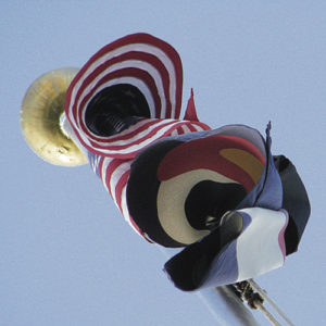flag coiled