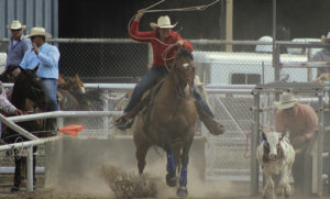 Meeker High School alumnae Deena Norell won the breakaway roping in the Colorado Professional Rodeo held Friday during the 130th annual Range Call celebration, which celebrates the oldest continuous rodeo in the state of Colorado.