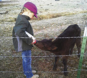 Agri-tourism means sharing the agricultural life of our surroundings with those who may have never seen or been to a working ranch, farm, dairy, etc. Above, Deana Wood is feeding a calf during calving season on a Rio Blanco County ranch.