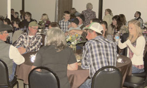 More than 150 people enjoyed a catered prime rib dinner from Holliday's during Saturday night's After Birth Ball, a celebration of the calving and lambing season put on as a fund-raising event by and for the Meeker Chapter of the Future Farmers of America.