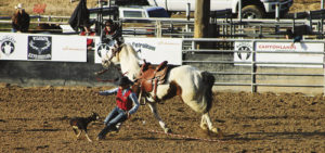 The Colorado Northwestern Community College Rodeo Team had a great season, which has come to an end. The team is No. 2 in the nation, it has a cowboy ranked No. 1 in the nation and has several members of the team who have qualified for the College National Finals Rodeo in Casper, Wyo., this summer. Both photos here are from the Spartan Showdown, held at Centennial Park in Rangely on April 1 and 2 and hosted by CNCC.