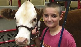 Kolbi and Kaden Franklin traveled to Madison, Wisc., to take part in the 2016 Junior National Hereford Expo.  Kaden, left, was first in class with his steer, making it to the champion drive and third in class for showmanship. He was seventh overall in the junior division of the livestock judging. Kolbi was second in class with her heifer, and she made it to the semifinals in showmanship. She remains the Colorado Hereford Princess as well as the Colorado Junior Hereford Association treasurer and was awarded the Outstanding State Junior Member at the awards ceremony.