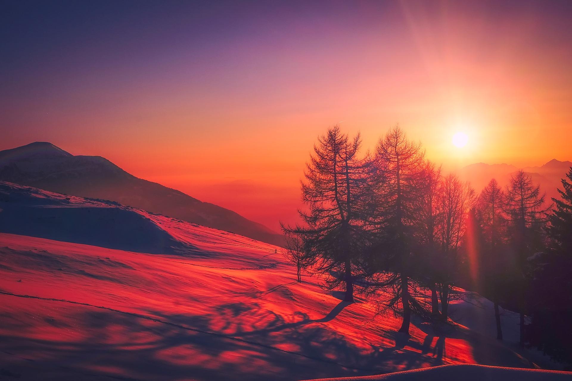 forest snow sunrise